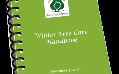 Winter Tree Care Handbook
