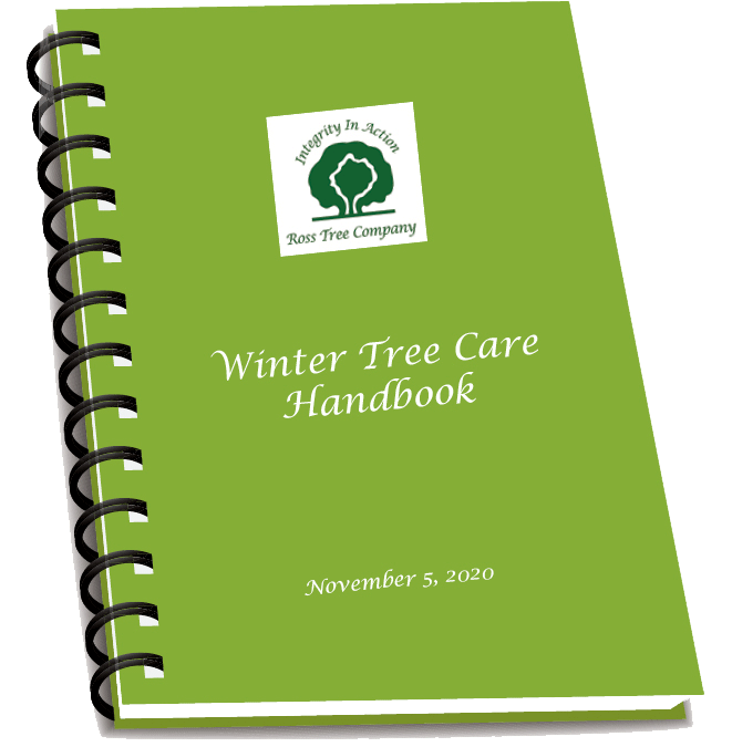 Winter Tree Care Handbook