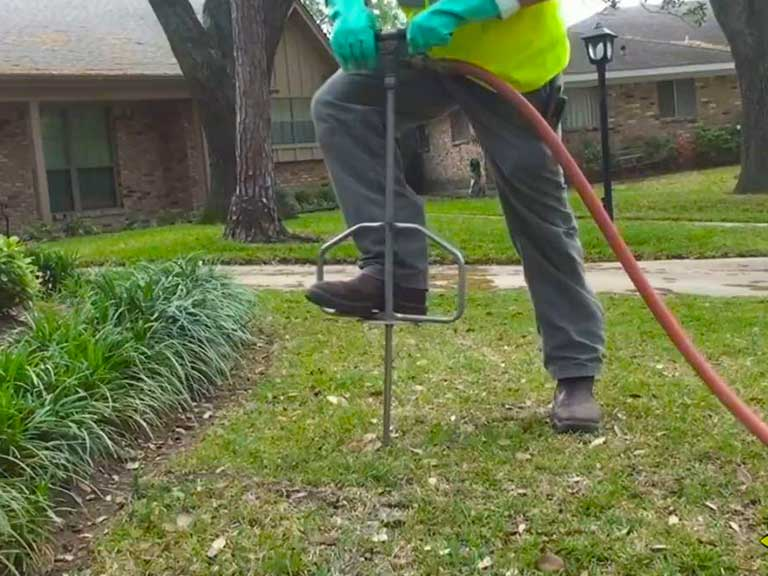 deep root watering and fertilization